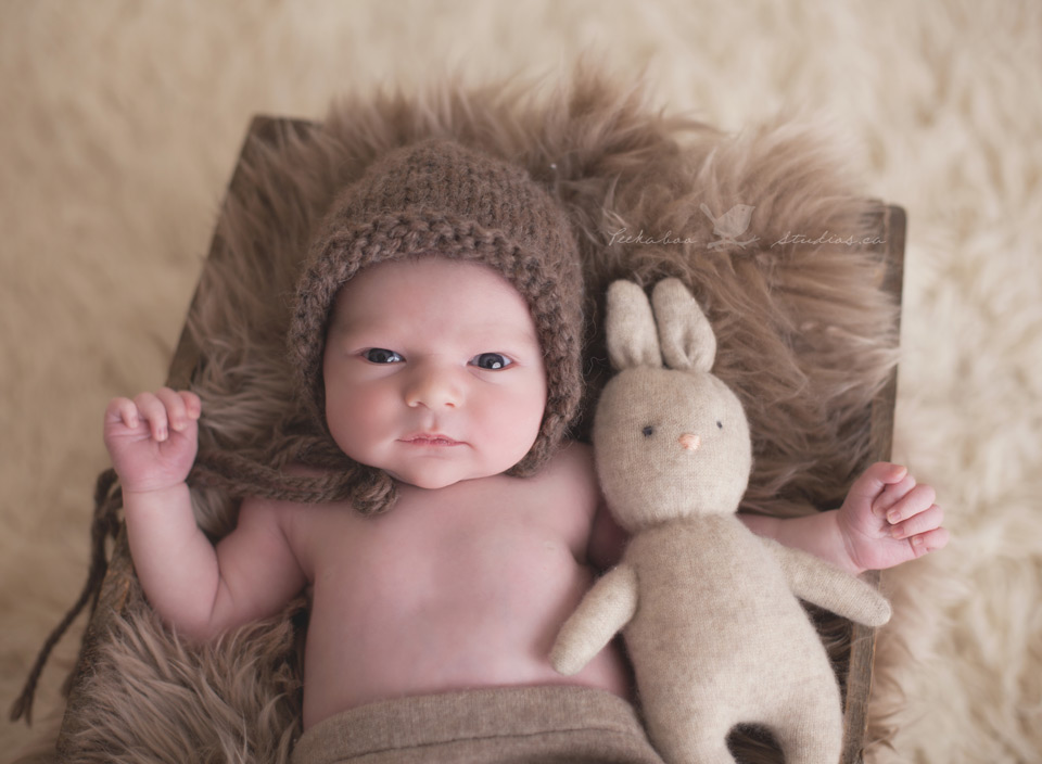 Peekaboo Studios Photography   Toronto Newborn Photographer