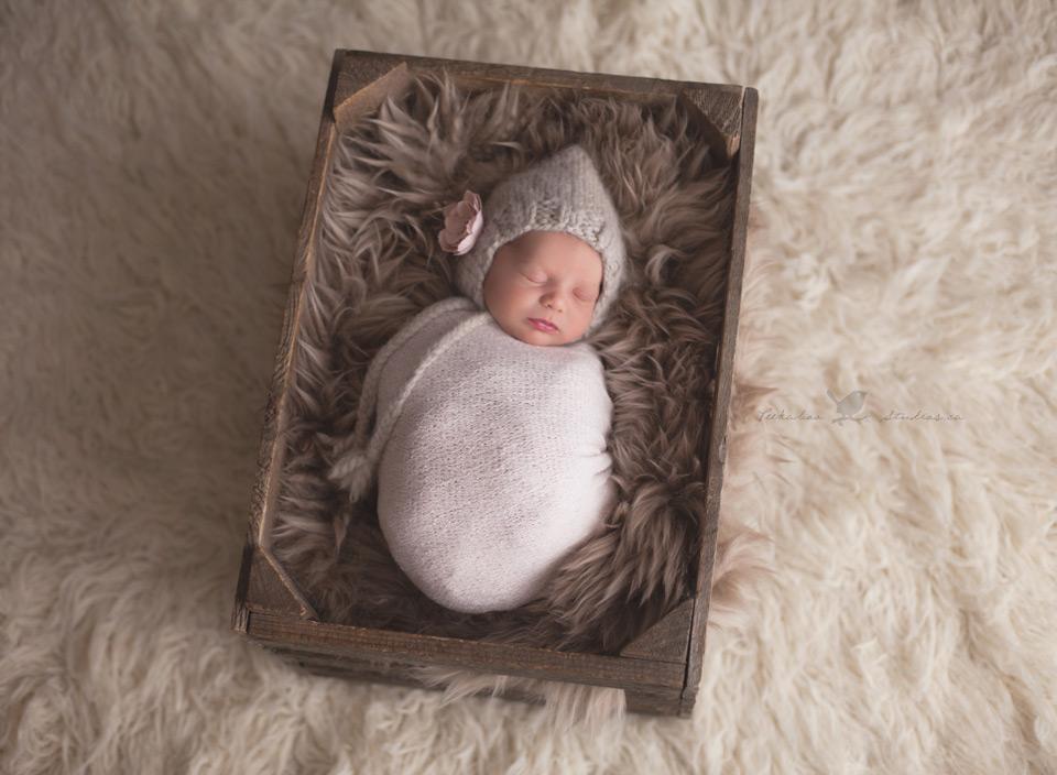Toronto Baby Photographer     www.peekaboostudios.ca