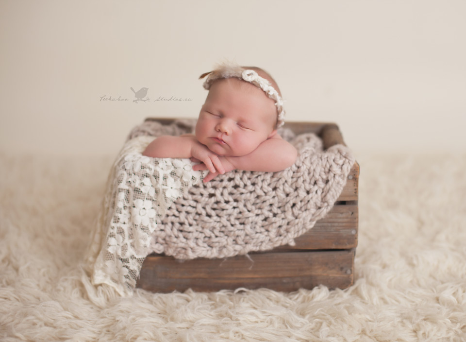 Toronto Newborn Photographer -Peekaboo Studios Photography